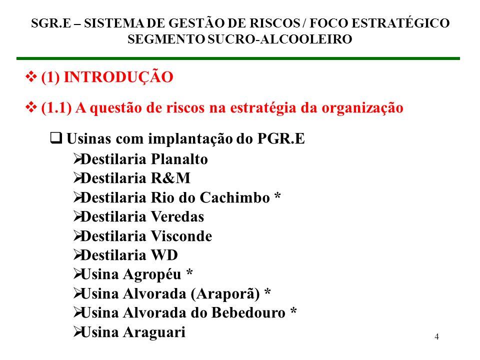 14 (2) ABORDAGEM FINANCEIRA DA GESTÃO DE RISCOS (2.1) O maior valor para a organização SGR.E – SISTEMA DE GESTÃO DE RISCOS / FOCO ESTRATÉGICO SEGMENTO SUCRO-ALCOOLEIRO LUCRATIVIDADE