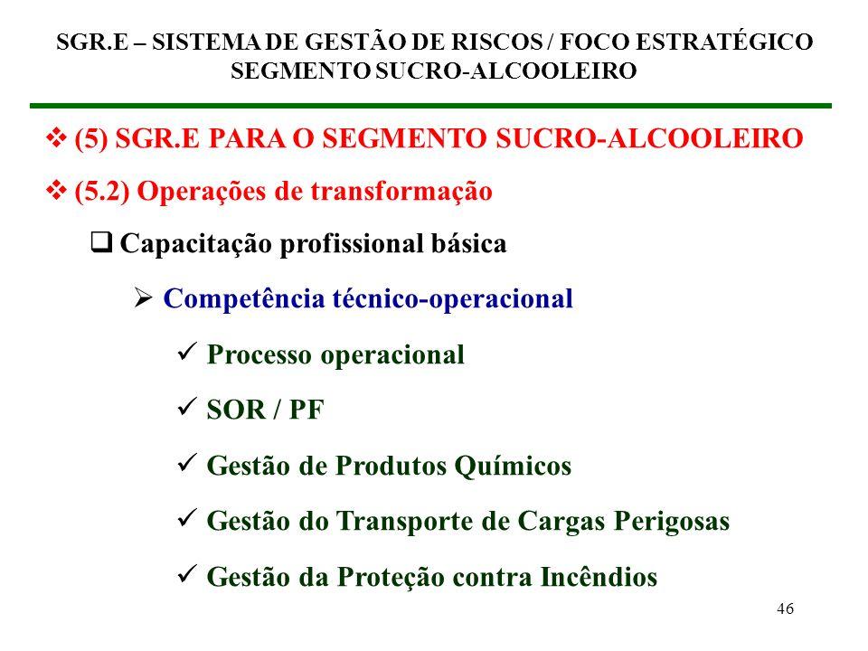 45 (5) SGR.E PARA O SEGMENTO SUCRO-ALCOOLEIRO (5.2) Operações de transformação Capacitação profissional básica Competência físico-comportamental Gestã