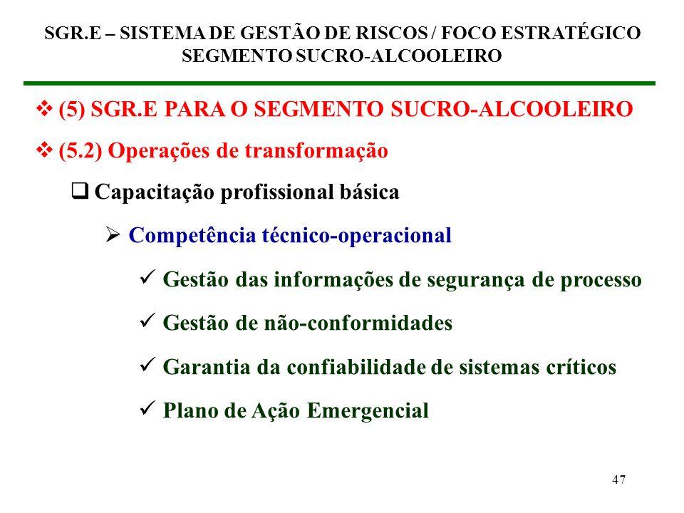 46 (5) SGR.E PARA O SEGMENTO SUCRO-ALCOOLEIRO (5.2) Operações de transformação Capacitação profissional básica Competência técnico-operacional Process