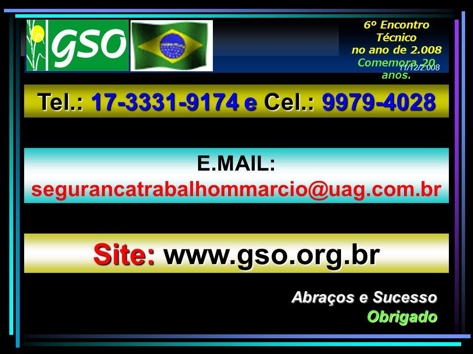 Abraços e Sucesso Obrigado Tel.: 17-3331-9174 e Cel.: 9979-4028 E.MAIL: segurancatrabalhommarcio@uag.com.br Site: www.gso.org.br 11/12/2.008 6º Encont
