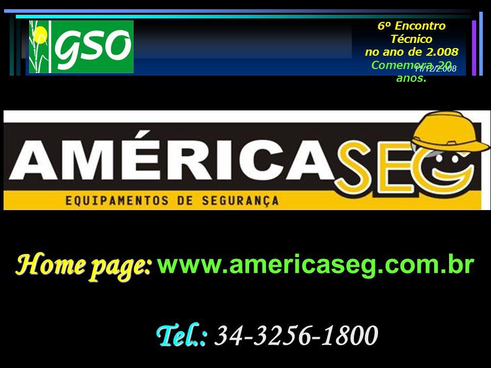 Tel.: Tel.: 34-3256-1800 Home page: Home page: www.americaseg.com.br 11/12/2.008 6º Encontro Técnico no ano de 2.008 Comemora 20 anos.