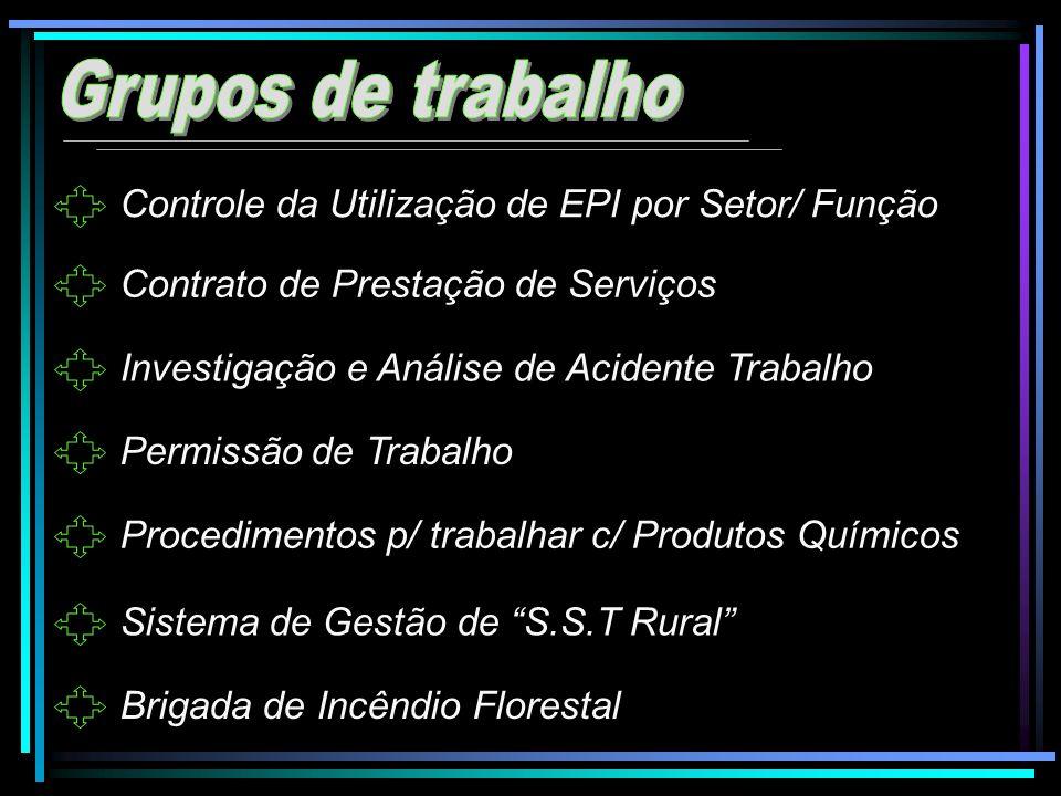 Controle da Utilização de EPI por Setor/ Função Contrato de Prestação de Serviços Investigação e Análise de Acidente Trabalho Permissão de Trabalho Pr