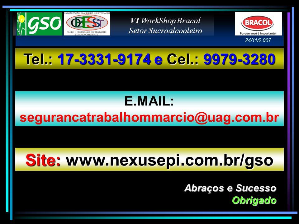 Abraços e Sucesso Obrigado Tel.: 17-3331-9174 e Cel.: 9979-3280 E.MAIL: segurancatrabalhommarcio@uag.com.br Site: www.nexusepi.com.br/gso VI WorkShop