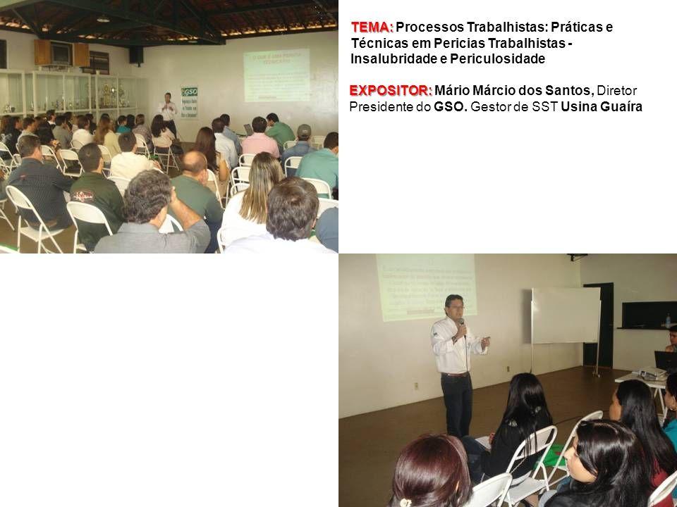 TEMA: TEMA: Processos Trabalhistas: Práticas e Técnicas em Pericias Trabalhistas - Insalubridade e Periculosidade EXPOSITOR: EXPOSITOR: Mário Márcio d