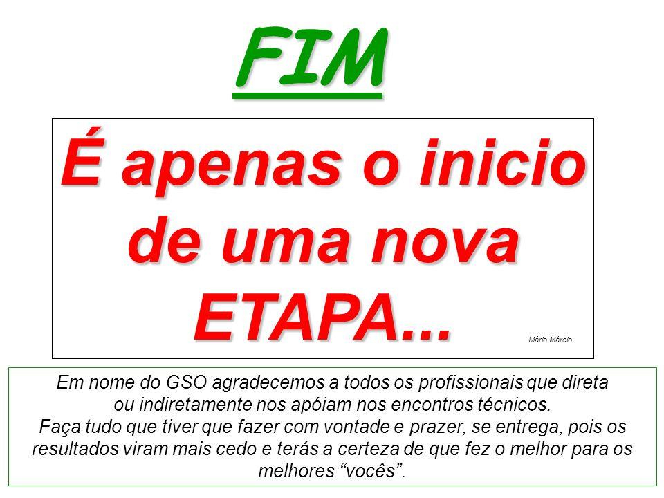 É apenas o inicio de uma nova ETAPA... FIM É apenas o inicio de uma nova ETAPA... Em nome do GSO agradecemos a todos os profissionais que direta ou in