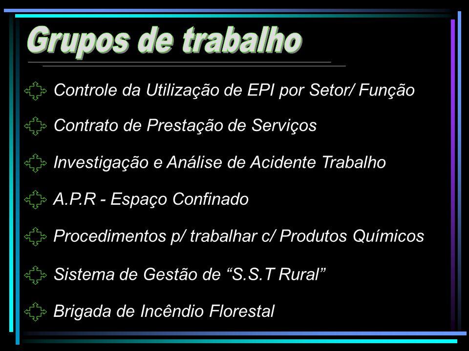 Controle da Utilização de EPI por Setor/ Função Contrato de Prestação de Serviços Investigação e Análise de Acidente Trabalho A.P.R - Espaço Confinado