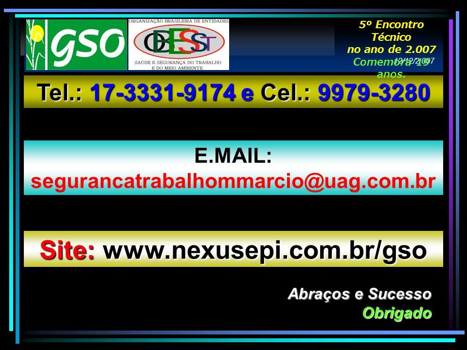 Abraços e Sucesso Obrigado Tel.: 17-3331-9174 e Cel.: 9979-3280 E.MAIL: segurancatrabalhommarcio@uag.com.br Site: www.nexusepi.com.br/gso 12/12/2.007