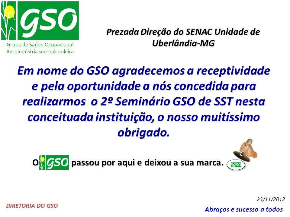Grupo de Saúde Ocupacional Agroindústria sucroalcooleira Abraços e sucesso a todos DIRETORIA DO GSO 23/11/2012 Em nome do GSO agradecemos a receptivid