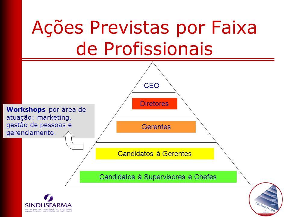 Diretores CEO Gerentes Candidatos à Gerentes Candidatos à Supervisores e Chefes Ações Previstas por Faixa de Profissionais Workshops por área de atuaç