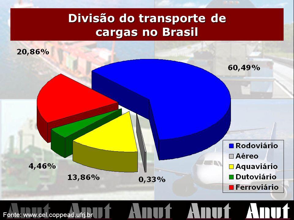 Fonte: www.cel.coppead.ufrj.br Divisão do transporte de cargas no Brasil