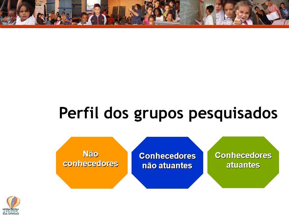 Perfil dos grupos pesquisados Conhecedores atuantes Conhecedores não atuantes Não conhecedores