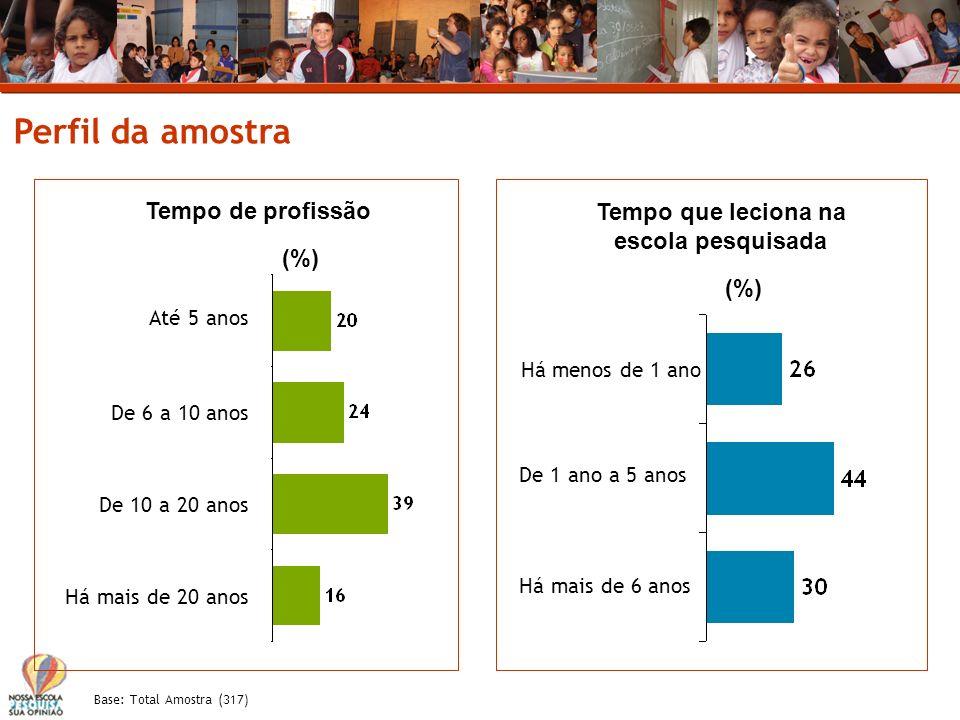 Base: Total Amostra (317) Perfil da amostra Períodos em que leciona na escola pesquisada Diurno Diurno/Noturno Não respondeu 2% Leciona em outras escolas Não Sim