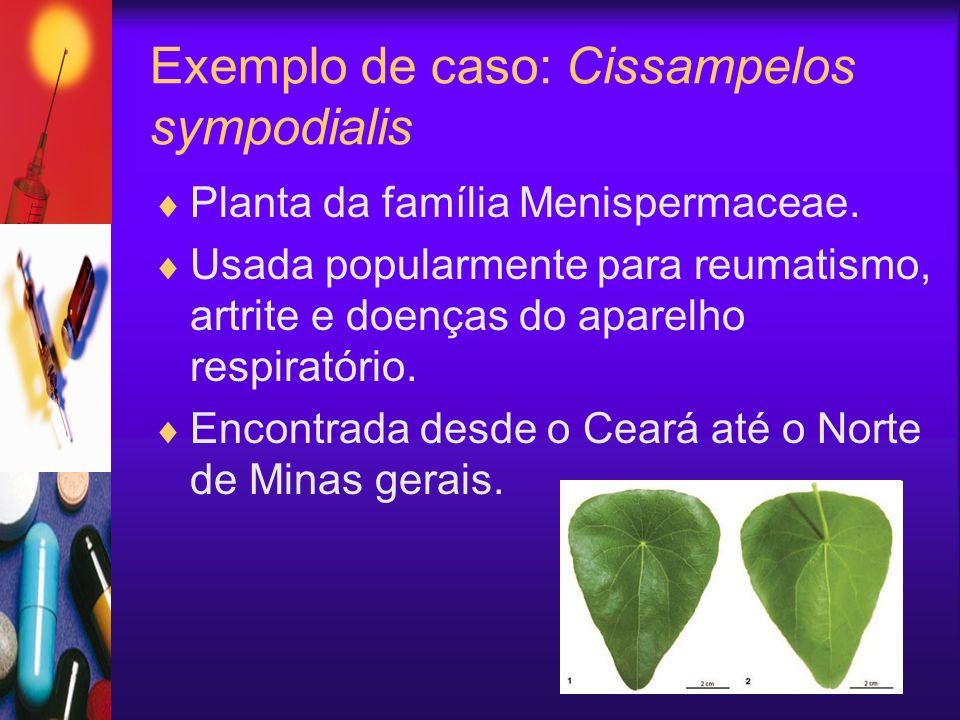 Exemplo de caso: Cissampelos sympodialis Planta da família Menispermaceae. Usada popularmente para reumatismo, artrite e doenças do aparelho respirató