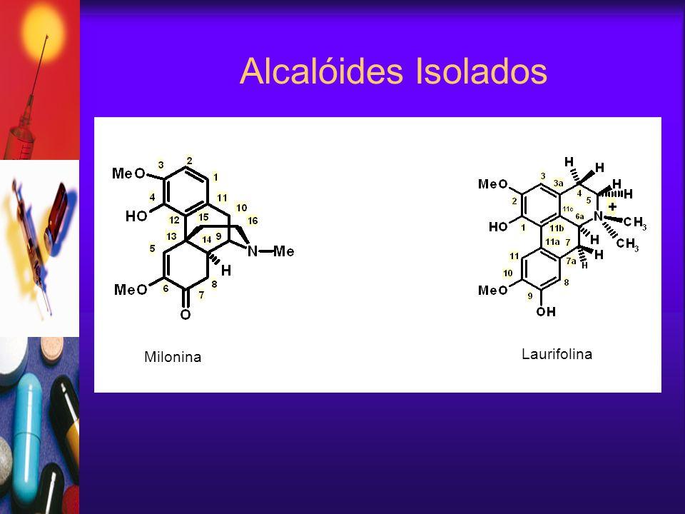 Alcalóides Isolados Laurifolina Milonina