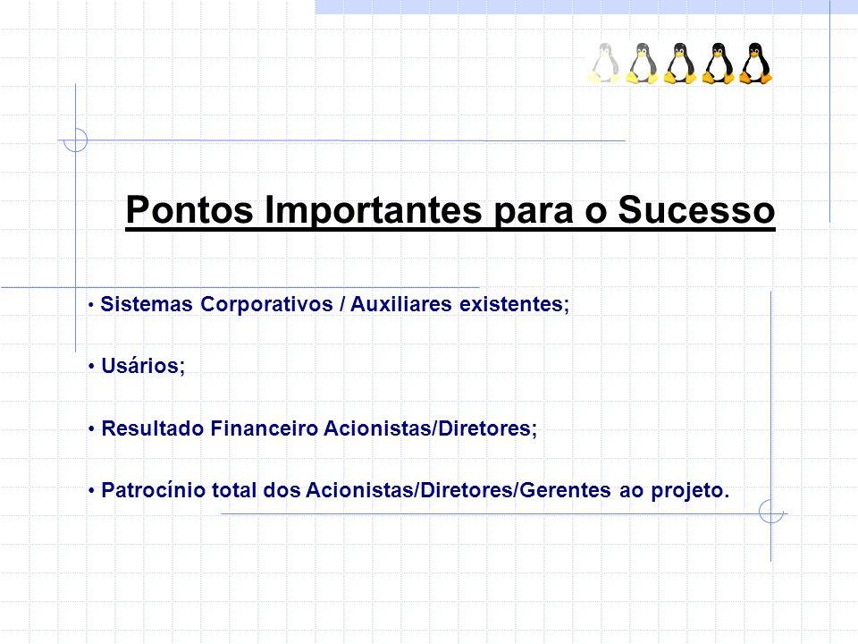 Pontos Importantes para o Sucesso Sistemas Corporativos / Auxiliares existentes; Usários; Resultado Financeiro Acionistas/Diretores; Patrocínio total