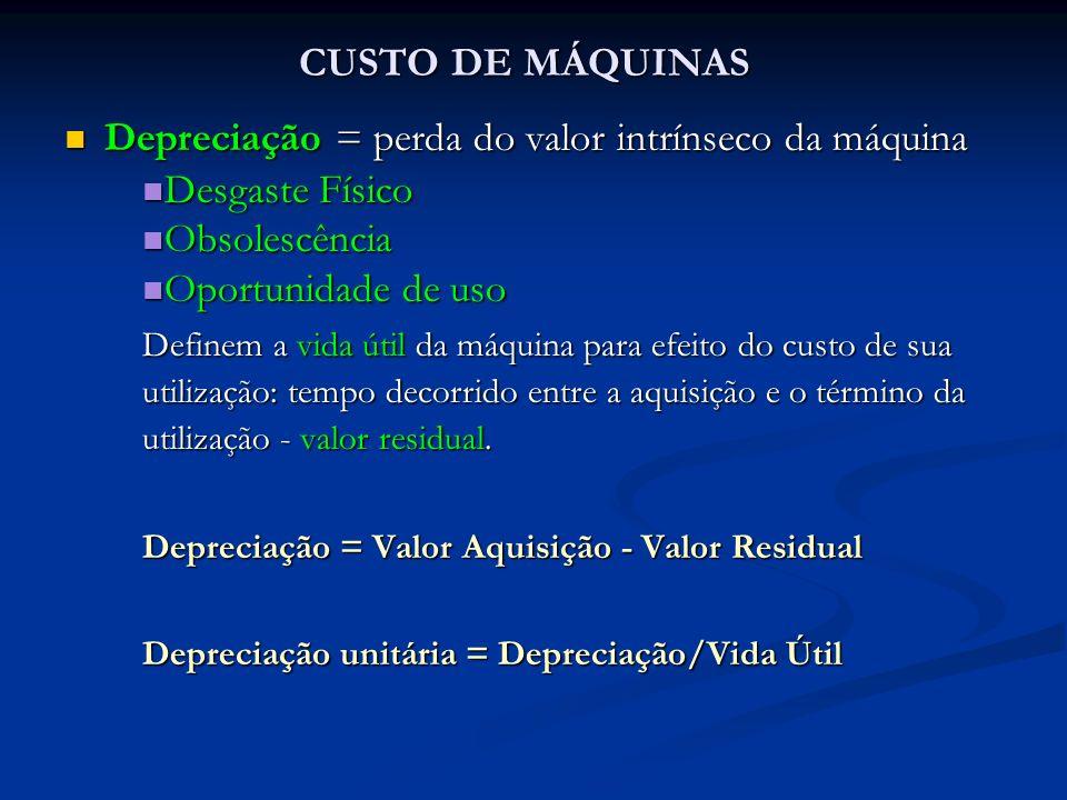 CUSTO DE MÁQUINAS Depreciação = perda do valor intrínseco da máquina Depreciação = perda do valor intrínseco da máquina Desgaste Físico Desgaste Físic