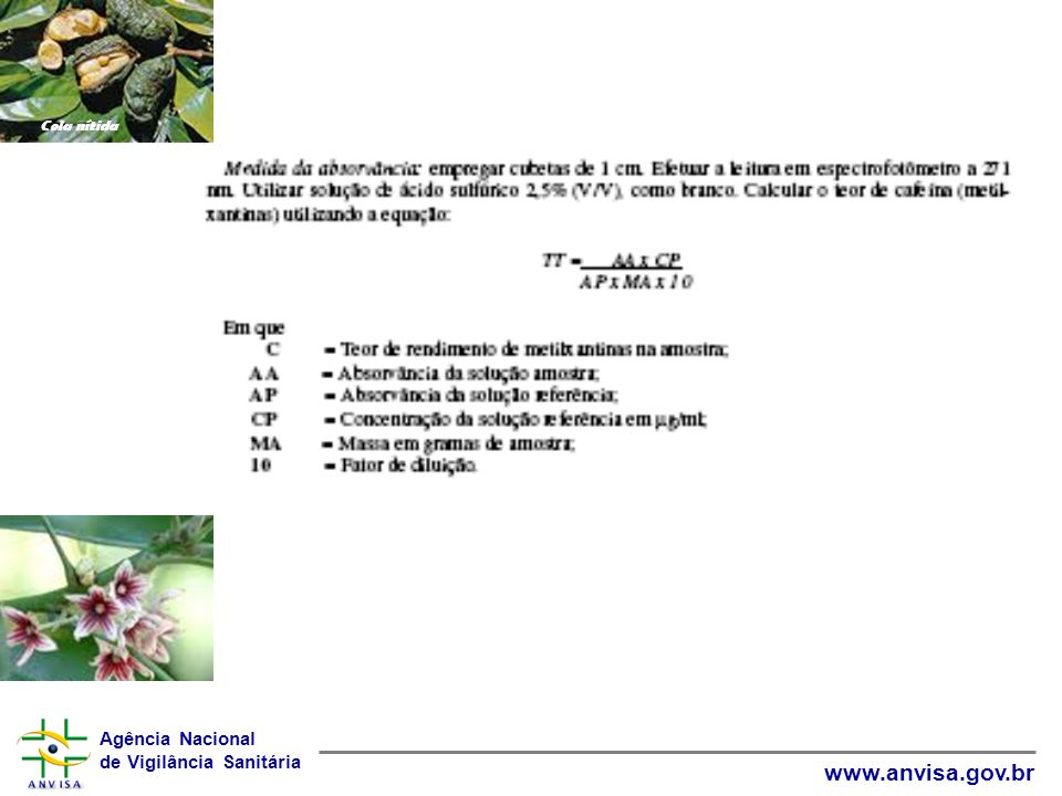 Agência Nacional de Vigilância Sanitária www.anvisa.gov.br Cola nítida