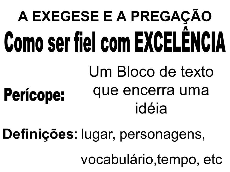 A EXEGESE E A PREGAÇÃO Um Bloco de texto que encerra uma idéia Definições: lugar, personagens, vocabulário,tempo, etc