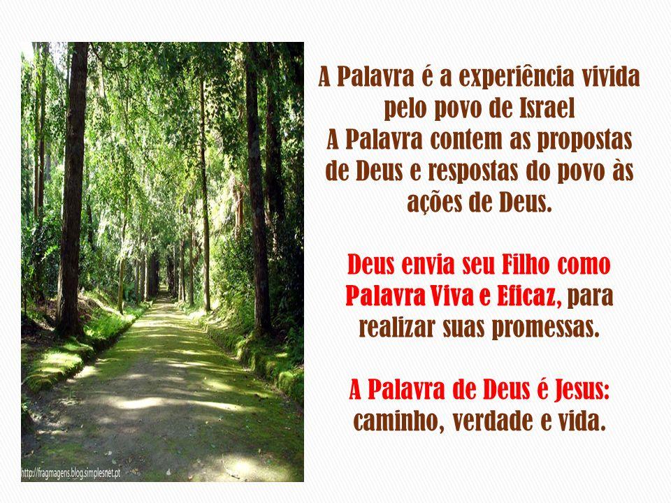 A Bíblia – enquanto contém a Palavra de Deus, viva e eficaz: nutre a VOCACÃO, a FORMACÃO, a ESPIRITUALIDADE e a MISSÃO de todo o discípulo missionário