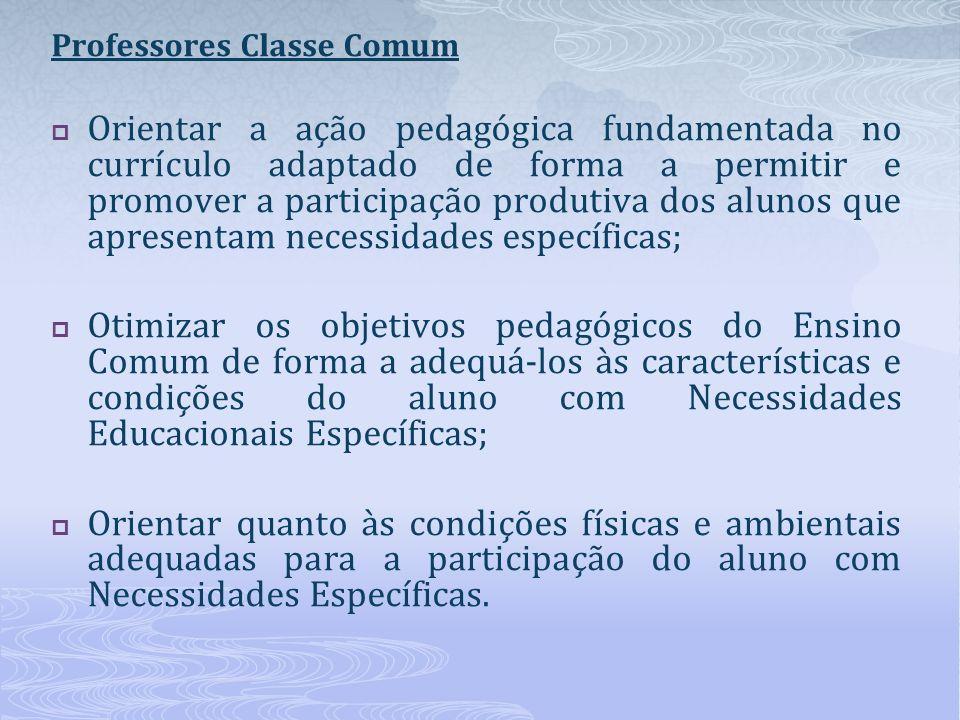 Professores Classe Comum Orientar a ação pedagógica fundamentada no currículo adaptado de forma a permitir e promover a participação produtiva dos alu