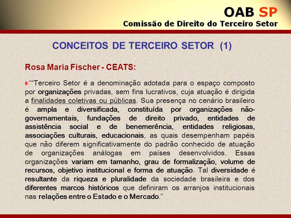 Rosa Maria Fischer - CEATS: Terceiro Setor é a denominação adotada para o espaço composto por organizações privadas, sem fins lucrativos, cuja atuação