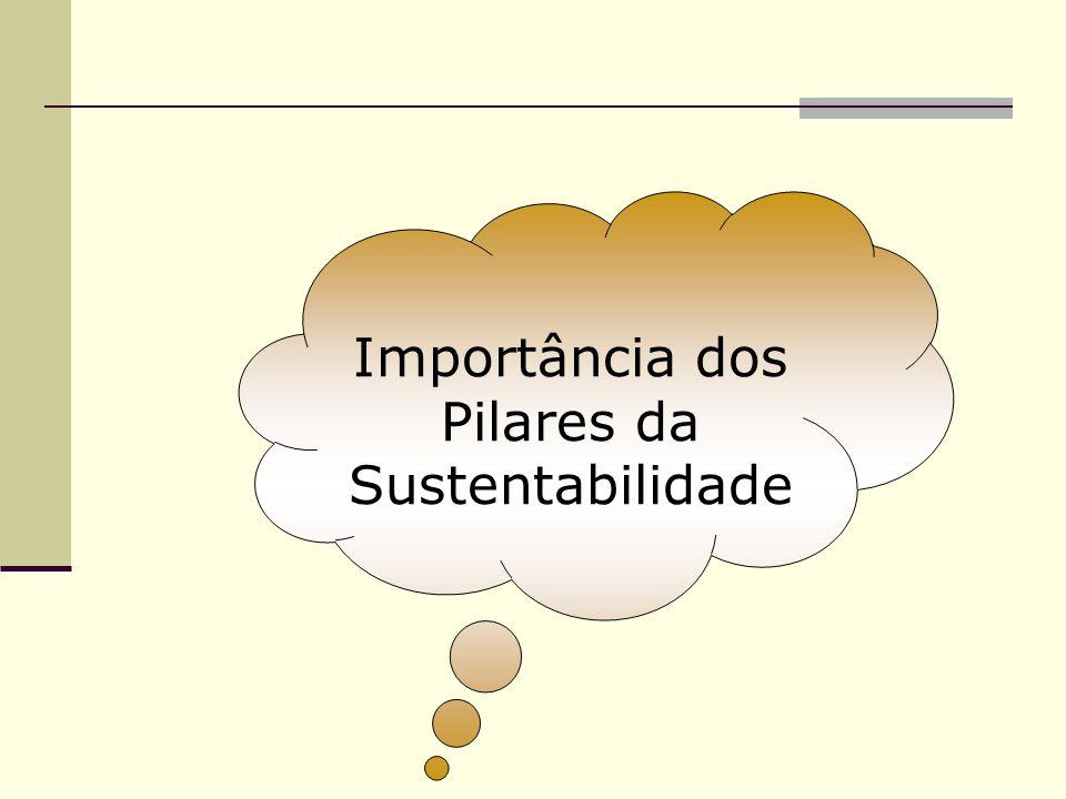 Importância dos Pilares da Sustentabilidade