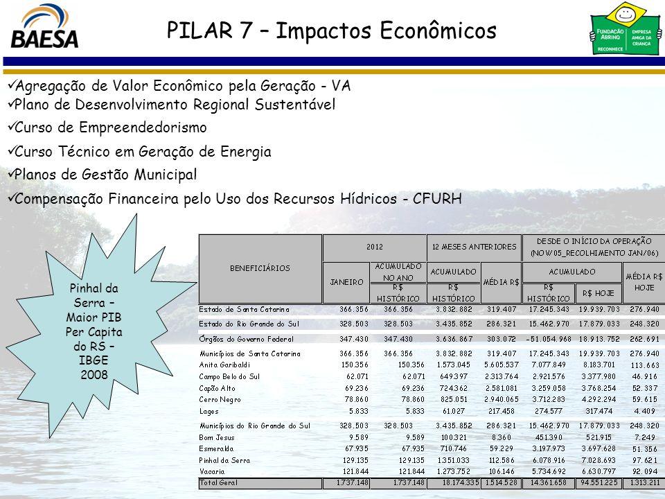 Curso Técnico em Geração de Energia Pinhal da Serra – Maior PIB Per Capita do RS – IBGE 2008 PILAR 7 – Impactos Econômicos Agregação de Valor Econômic