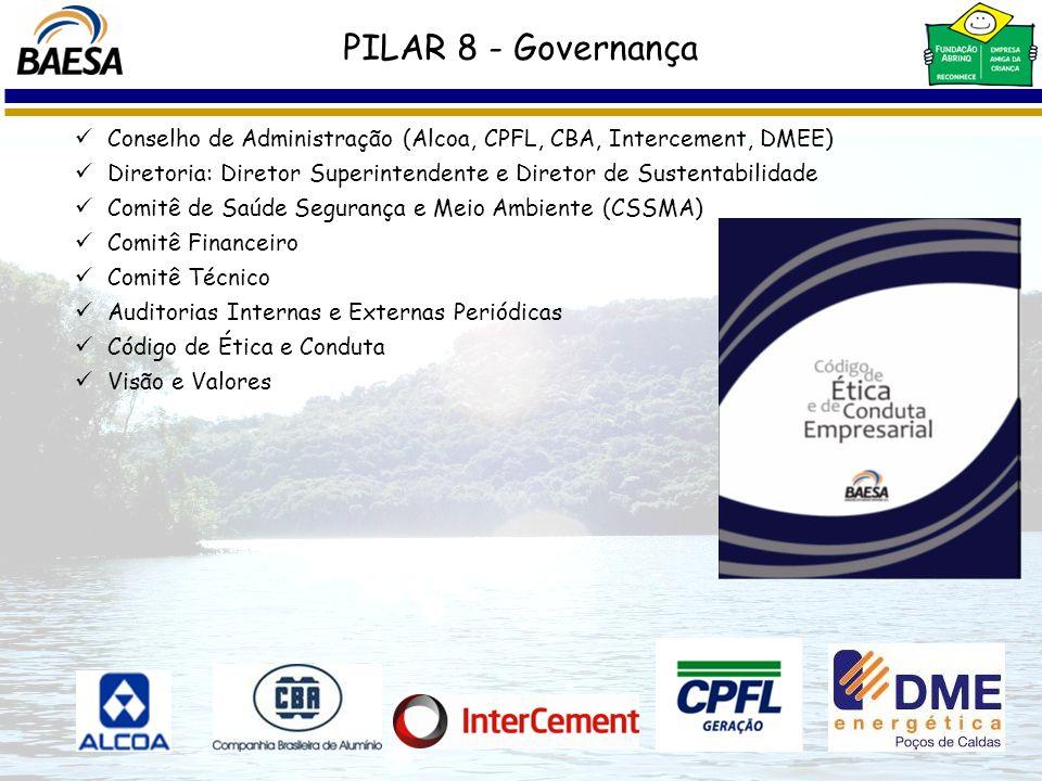 Conselho de Administração (Alcoa, CPFL, CBA, Intercement, DMEE) Diretoria: Diretor Superintendente e Diretor de Sustentabilidade Comitê de Saúde Segur