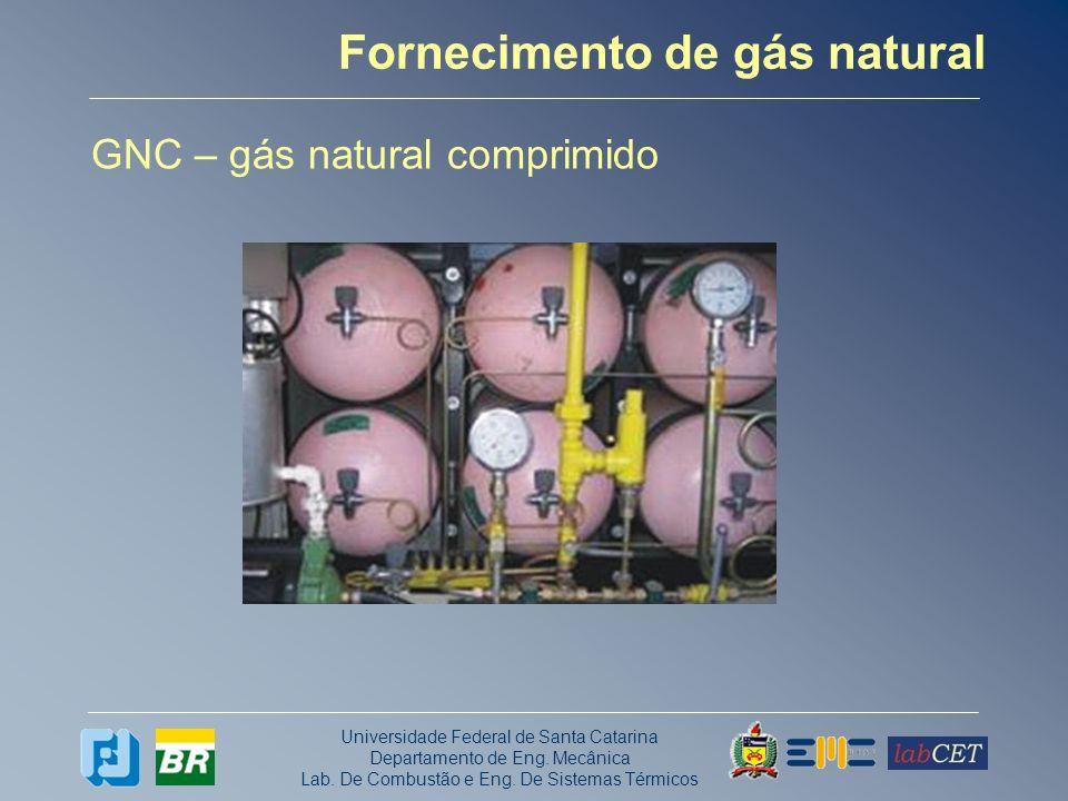 Universidade Federal de Santa Catarina Departamento de Eng. Mecânica Lab. De Combustão e Eng. De Sistemas Térmicos Fornecimento de gás natural GNC – g