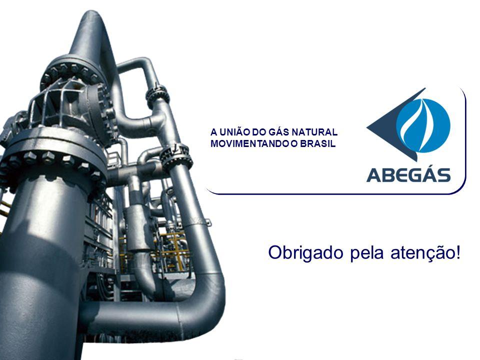 www.abegas.org.brRio de Janeiro - RJ | 14 de Março de 2007 Obrigado pela atenção.