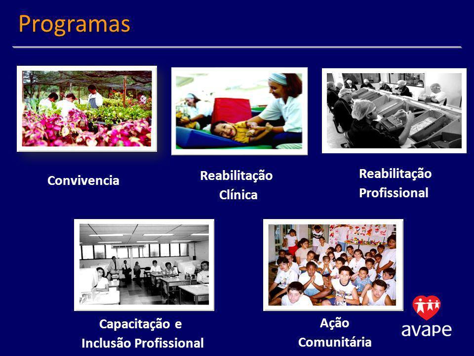 Reabilitação Profissional Desenvolvimento de competências para inicio ou retorno a vida Profissional Desenvolvimento Pessoal e Social Inclusão em Alternativas de Trabalho Geração de Trabalho e Renda