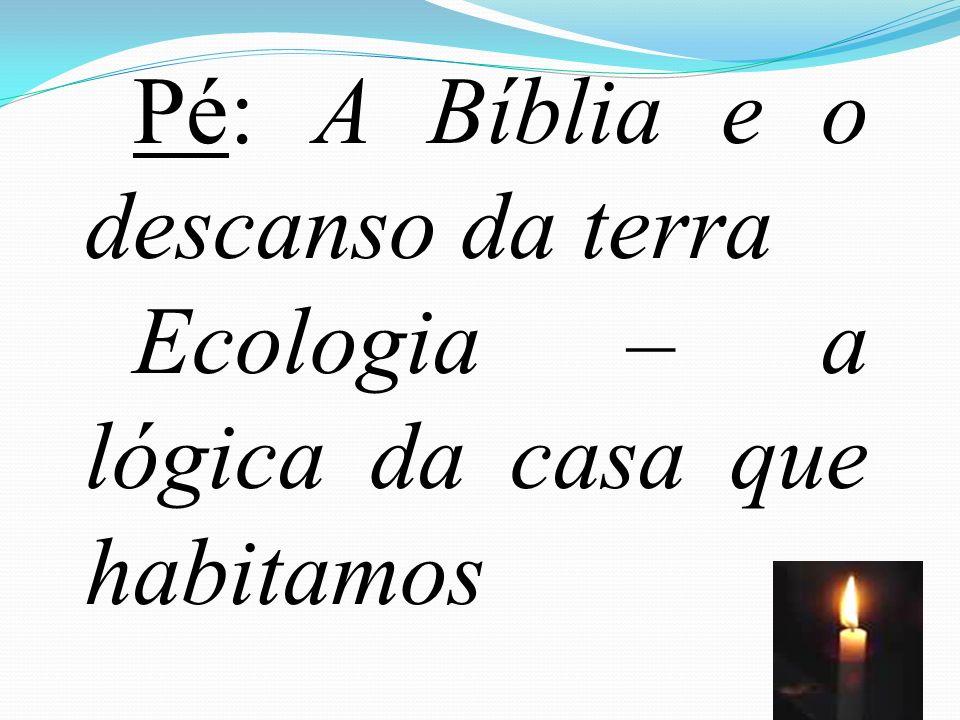 62 Pé: A Bíblia e o descanso da terra Ecologia – a lógica da casa que habitamos