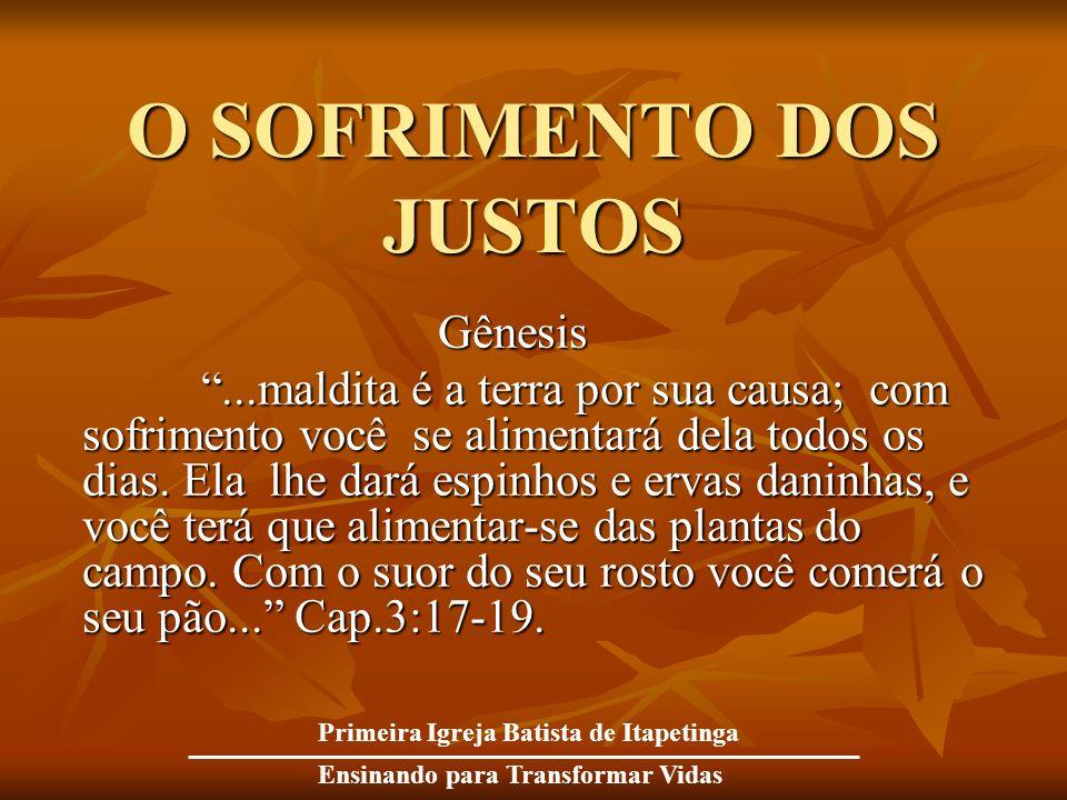 O SOFRIMENTO DOS JUSTOS Gênesis Gênesis...maldita é a terra por sua causa; com sofrimento você se alimentará dela todos os dias. Ela lhe dará espinhos