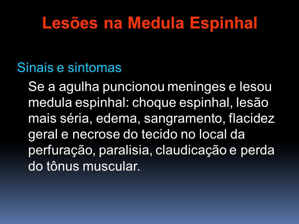 Sinais e sintomas Se a agulha puncionou meninges e lesou medula espinhal: choque espinhal, lesão mais séria, edema, sangramento, flacidez geral e necr