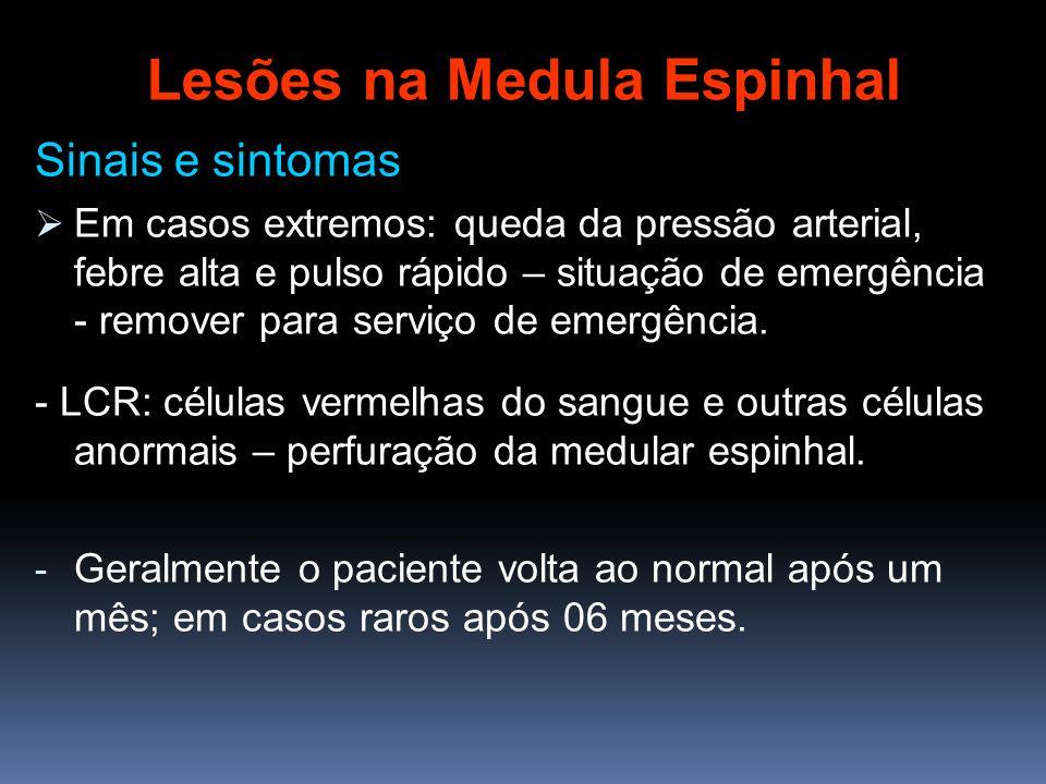 Sinais e sintomas Em casos extremos: queda da pressão arterial, febre alta e pulso rápido – situação de emergência - remover para serviço de emergênci