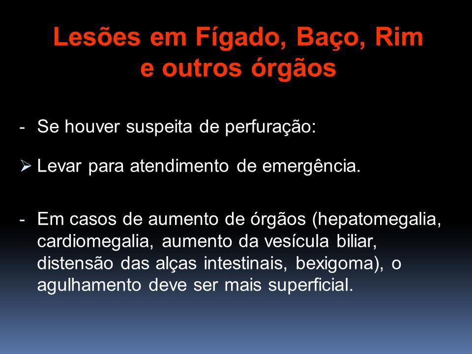 - Se houver suspeita de perfuração: Levar para atendimento de emergência. - Em casos de aumento de órgãos (hepatomegalia, cardiomegalia, aumento da ve