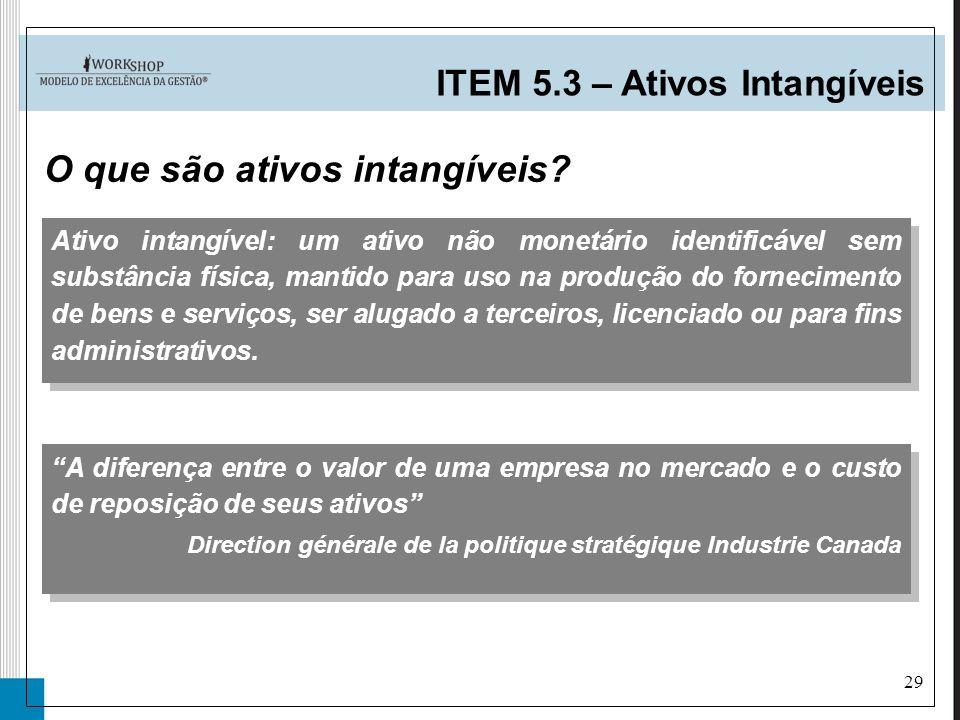 29 Ativo intangível: um ativo não monetário identificável sem substância física, mantido para uso na produção do fornecimento de bens e serviços, ser