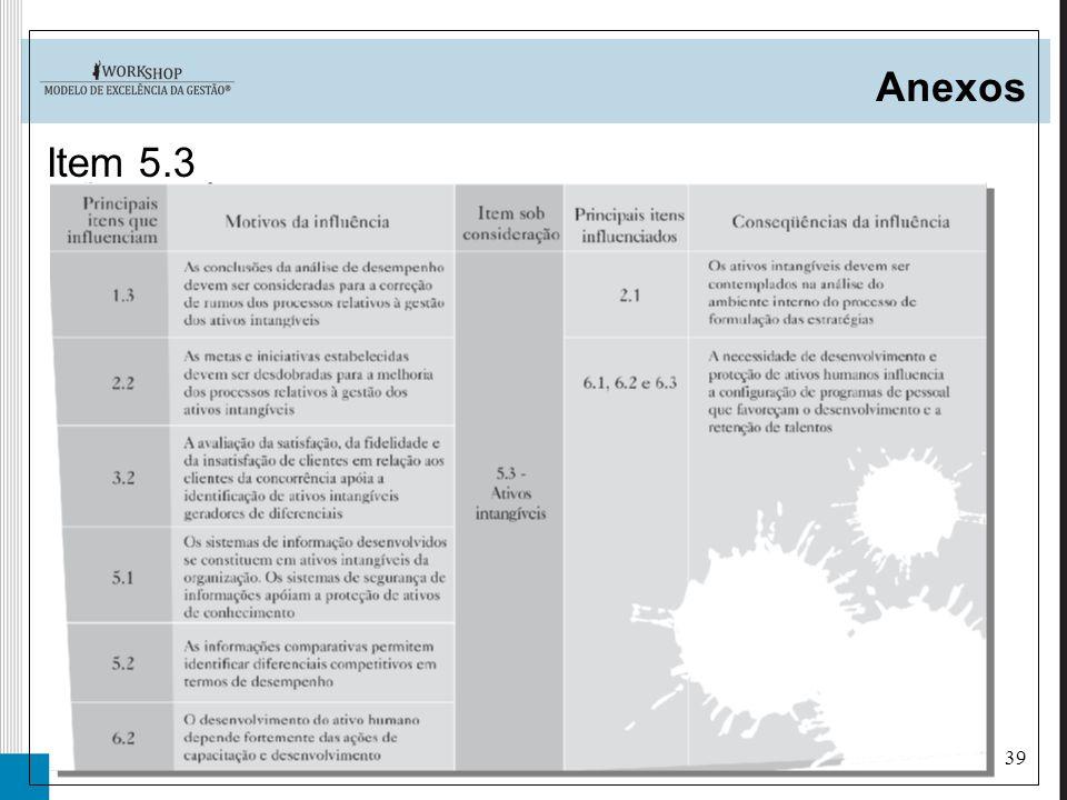 39 Anexos Item 5.3