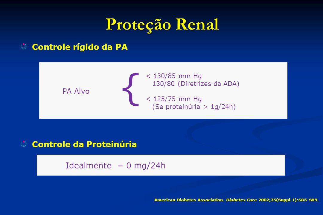 BRAs reduzem pela metade a perda da função renal, no entanto, mesmo com o tratamento com doses máximas, a progressão da doença continua, mostrando a necessidade de melhor proteção Declíneo da taxa de filtração glomerular (mL/min/1.73m 2 /ano) Estudos com BRAs em dose máxima -6 -5,7 -5,5 - 12 Evolução natural da doença -2 Evolução sem doença Proteção proporcionada por BRAs Barnett AH, et al.