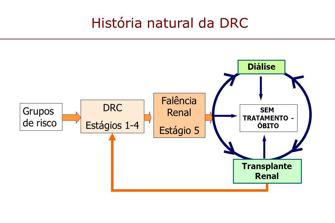 SEM TRATAMENTO - ÓBITO Grupos de risco DRC Estágios 1-4 Falência Renal Estágio 5 Transplante Renal Diálise História natural da DRC