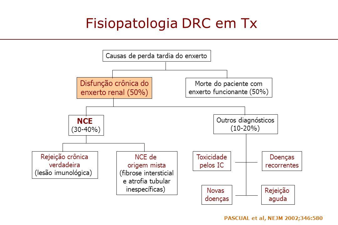 Fisiopatologia DRC em Tx Causas de perda tardia do enxerto Disfunção crônica do enxerto renal (50%) Morte do paciente com enxerto funcionante (50%) NC