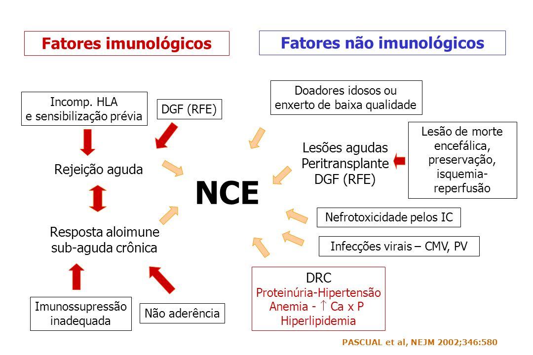 NCE Fatores não imunológicos Rejeição aguda Imunossupressão inadequada Não aderência DGF (RFE) Fatores imunológicos Doadores idosos ou enxerto de baix