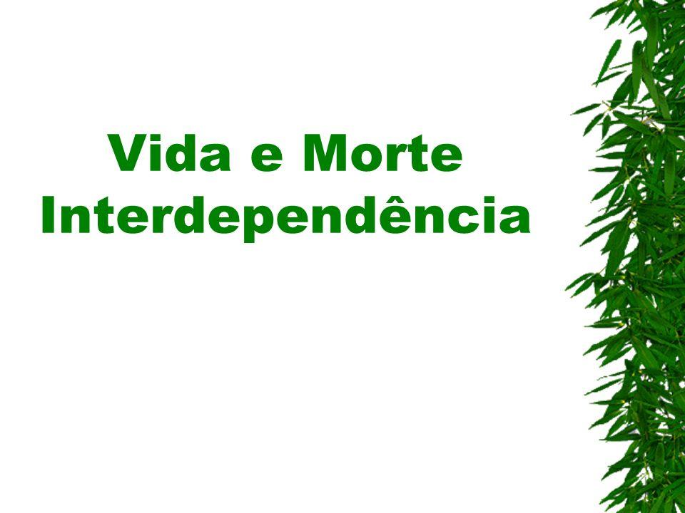 Vida e Morte Interdependência