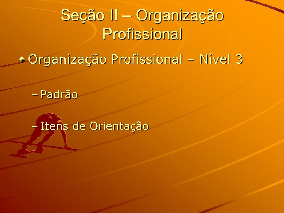 Seção II – Organização Profissional Organização Profissional – Nível 3 –Padrão –Itens de Orientação