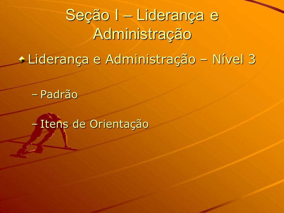 Seção I – Liderança e Administração Liderança e Administração – Nível 3 –Padrão –Itens de Orientação