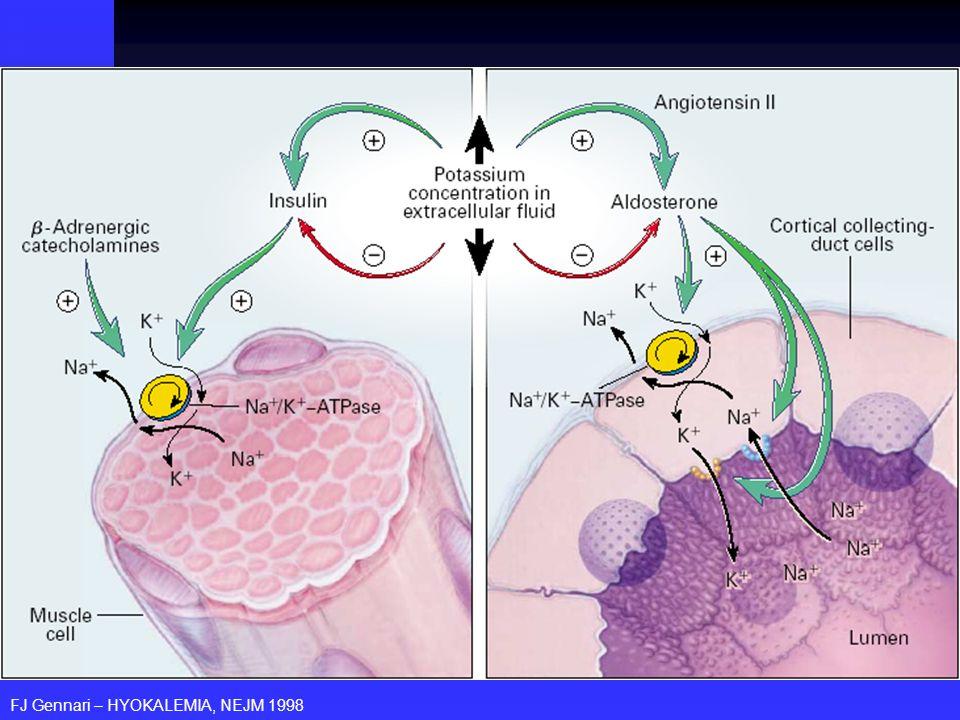 FISIOLOGIA DO POTÁSSIO Fluxo transcelular: extra intracelular Fluxo transcelular: extra intracelular Fonte: Na-K ATPase Fonte: Na-K ATPase Estimuladores: insulina e catecolamina adrenérgica-.