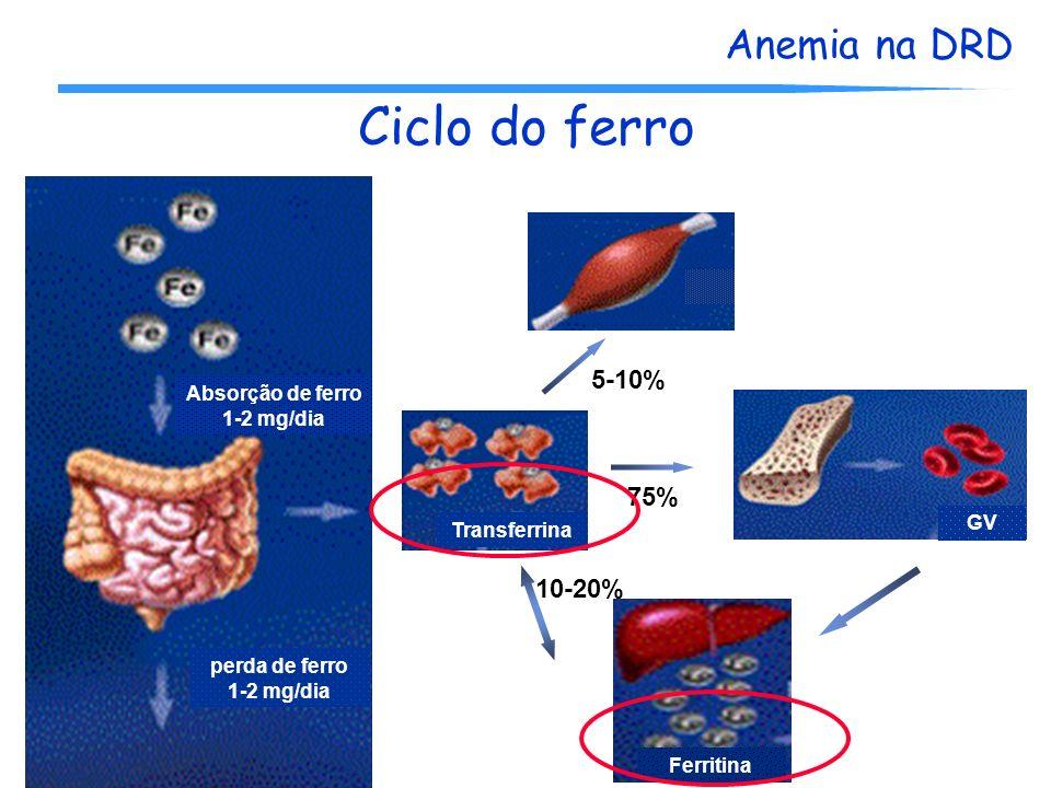 Anemia na DRD Ciclo do ferro Absorção de ferro 1-2 mg/dia perda de ferro 1-2 mg/dia Transferrina Ferritina GV 5-10% 75% 10-20%