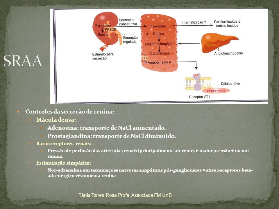 Controles da secreção de renina: Mácula densa: Adenosina: transporte de NaCl aumentado. Prostaglandina: transporte de NaCl diminuido. Barorreceptores