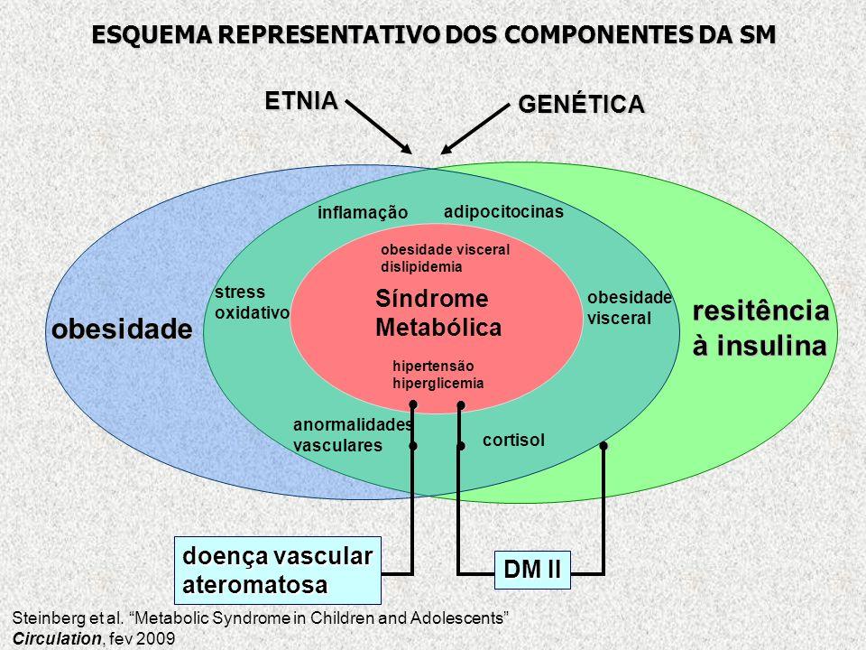 obesidade resitência à insulina obesidade visceral adipocitocinas inflamação stress oxidativo anormalidades vasculares cortisol Síndrome Metabólica ob