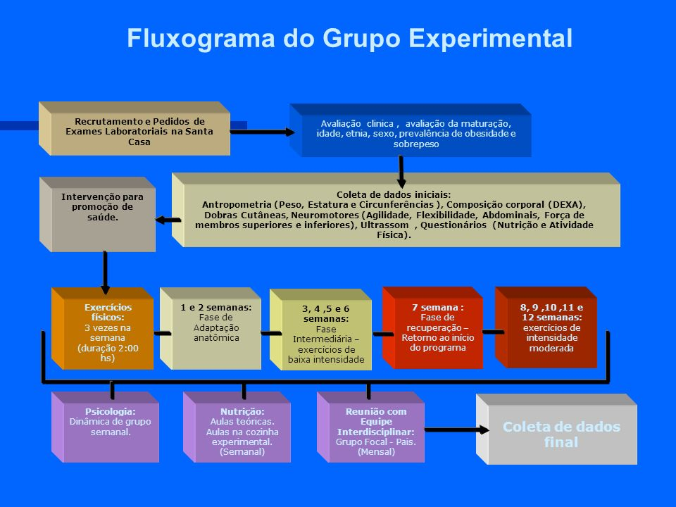 Fluxograma do Grupo Experimental Recrutamento e Pedidos de Exames Laboratoriais na Santa Casa Avaliação clinica, avaliação da maturação, idade, etnia,